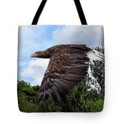 White Tailed Eagle Tote Bag