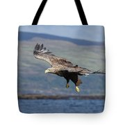 White-tailed Eagle Over Loch Tote Bag