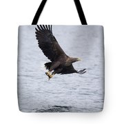 White-tailed Eagle With Catch Tote Bag