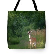 White Tailed Tote Bag