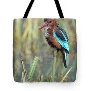 White-throated Kingfisher 13 Tote Bag