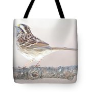 White-throated Sparrow Looking Skyward Tote Bag