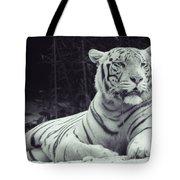 White Tiger 16 Tote Bag