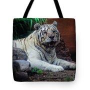 White Tiger Gladys Porter Zoo Texas Tote Bag