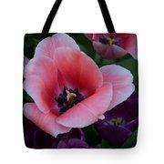 White Tip Pink Tulip Tote Bag
