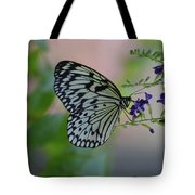 White Tree Nymph Polinating Purple Flowers Tote Bag