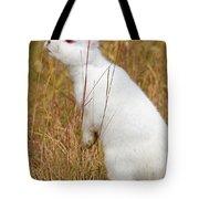 White Wabbit Tote Bag