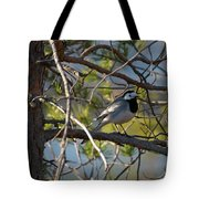 White Wagtail 2 Tote Bag