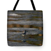 White Wagtail 4 Tote Bag