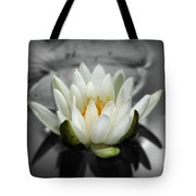 White Water Lily Black And White Tote Bag