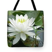 White Water Lily Wildflower - Nymphaeaceae Tote Bag