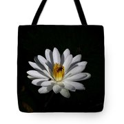 White Waterlily Tote Bag by April Wietrecki Green