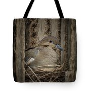White-winged Dove - Nesting Tote Bag