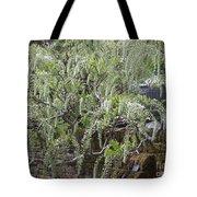 White Wisteria, Sissinghurst Tote Bag