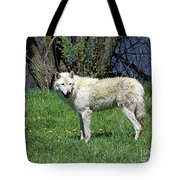 White Wolf 2 Tote Bag