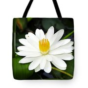 White Wonder Tote Bag