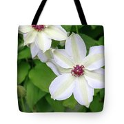White, Yellow, And Purple Clematis Blossom Tote Bag