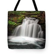 Whitehorse Falls 2 Tote Bag