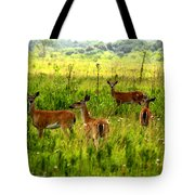 Whitetail Deer Family Tote Bag