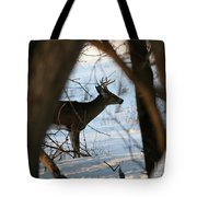 Whitetail Deer Threw The Trees Tote Bag