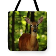 Whitetail Doe Tote Bag