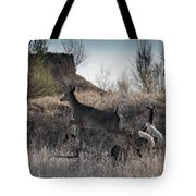 Whitetail In Flight Tote Bag