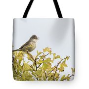Whitethroat  Tote Bag