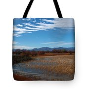 Whitewater Draw Tote Bag