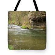 Whitewater River Spring 42 Tote Bag