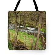 Whitewater River Spring 43 Tote Bag