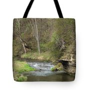 Whitewater River Spring 45 A Tote Bag
