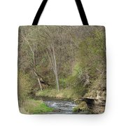 Whitewater River Spring 45 B Tote Bag