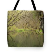 Whitewater River Spring 51 Tote Bag