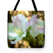 Who Here Has Seen Apple Blossoms In Late Summer Tote Bag
