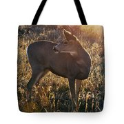 Who Is Back There Tote Bag