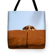 Who Is Looking? Tote Bag