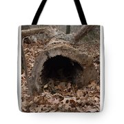 Our Hollowed Home Tote Bag