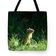 Who Me Tote Bag