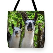 Who You? Tote Bag