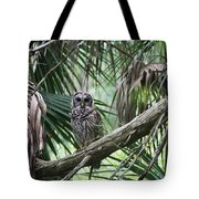 Whoooo Are You Tote Bag by April Wietrecki Green