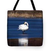Whooper Swan 2 Tote Bag