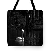 Whooper Swan In Bw 1 Tote Bag