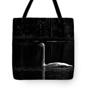 Whooper Swan In Bw 2 Tote Bag