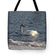 Whooper Swan Nr 3 Tote Bag