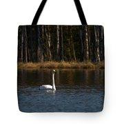 Whooper Swan Of Liesilampi 3 Tote Bag