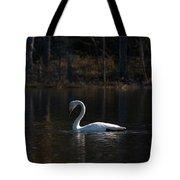 Whooper Swan Of Liesilampi 5 Tote Bag