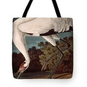 Whooping Crane Tote Bag by John James Audubon