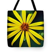 Whorled Rosinweed Tote Bag