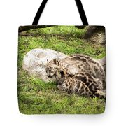 Who's The Boss Here? Tote Bag