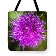 Whoville Tote Bag